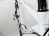 custom bicycle paint pinarello _ head tube.jpg