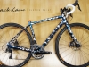 Trek Domane Disc Custom Paint _ built bike