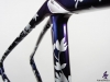 Trek Domane Disc Custom Paint _ seat tube