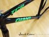 giant tcr custom paint _ green