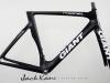 Giant Propel Custom Paint _ jack kane bikes