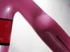 custom-painted-ridley-noah-_-brake-bridge