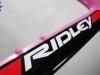 custom-painted-ridley-noah-_-down-tube