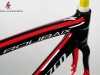 Specialized Roubaix Disc Paint Job _ custom bicycle